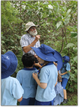 teacher explaining to students about plants in a forest